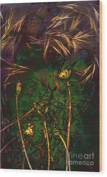 Grasslands Series No. 5 Wood Print by Vinson Krehbiel