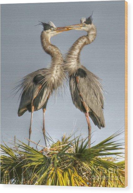 Great Blue Heron Couple Wood Print