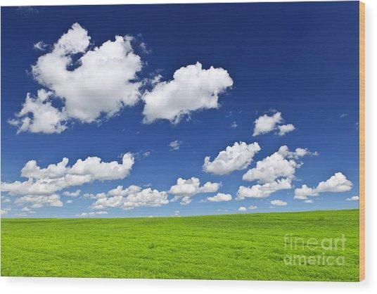 Green Rolling Hills Under Blue Sky Wood Print