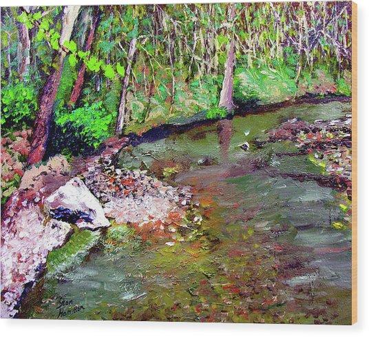Greesy Creek Wood Print by Stan Hamilton
