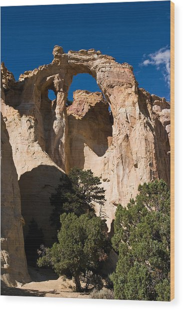 Grosvenor Arch Wood Print by James Marvin Phelps