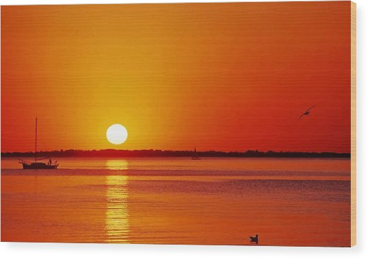 Gulf Of Mexico Sunset Wood Print