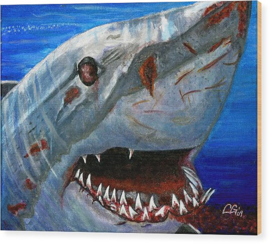 Happy Shark Wood Print by BlondeRoots Productions