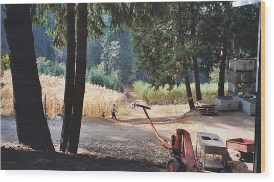 Harvest Time At Apple Hill Wood Print by Dawn Marie Black