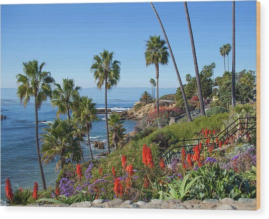 Heisler Park, Laguna Beach Wood Print
