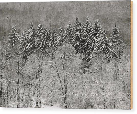 Hemlocks Over Whaley Lake  Wood Print by Jeremy Wolff