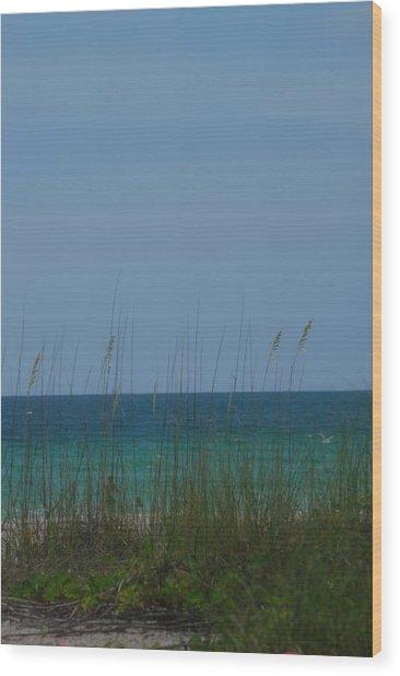 Holmes Beach Florida 2 Wood Print by Lisa Gabrius