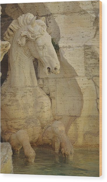 The Horse In The Fountain  Wood Print by JAMART Photography