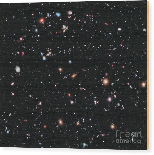 Hubble Extreme Deep Field Wood Print