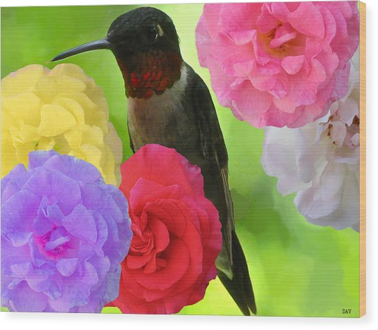 Hummingbird Flower Wood Print by Debra     Vatalaro