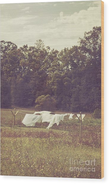 In The Country Wood Print