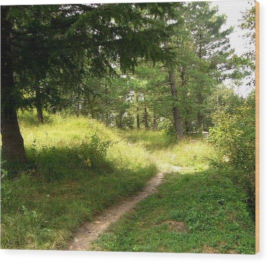 In The Forest Wood Print by Sunaina Serna Ahluwalia