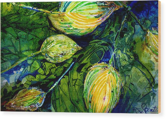 Indriel Blue Hosta Wood Print by Mary Sonya  Conti