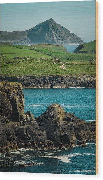 Irish Coastline Wood Print by Fergal Gleeson