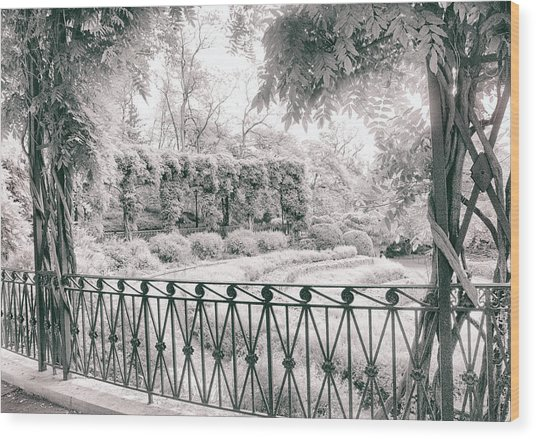 Italianate Pergola Wood Print