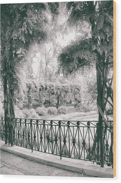 Italianate Garden Terrace Wood Print