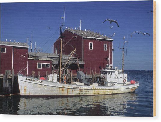 Jacob Pike Fishing Boat In Maine Wood Print by Carl Purcell