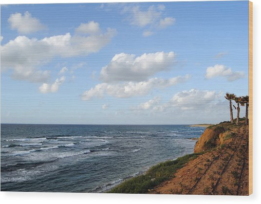Jaffa Beach 5 Wood Print