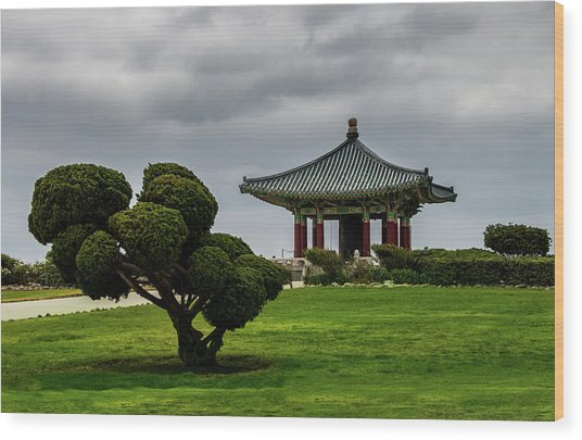 Korean Bell Of Friendship Wood Print