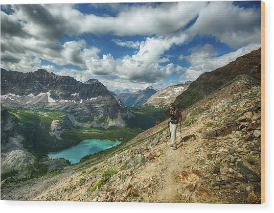 Lake O'hara Adventure Wood Print
