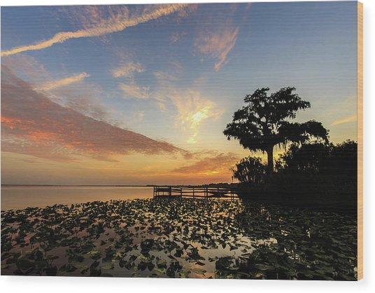 Lake Sunrise Wood Print