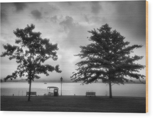 Lakeside Park I Wood Print by Steven Ainsworth