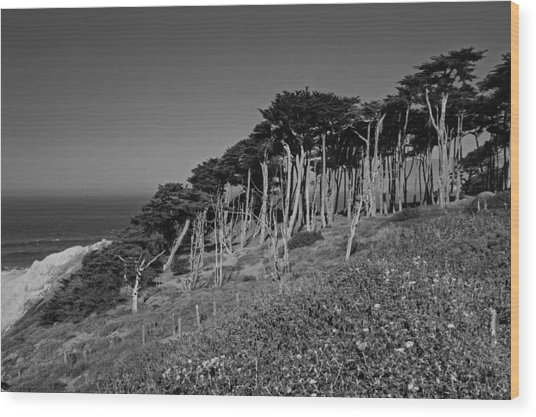 Lands End In San Francisco Wood Print