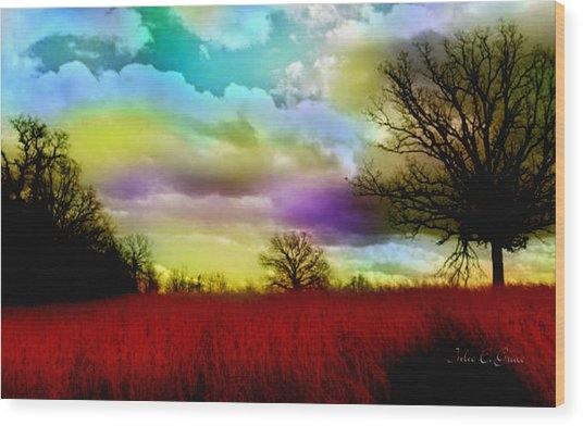Landscape In Red Wood Print