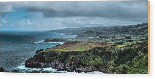 Landscapespanoramas Wood Print