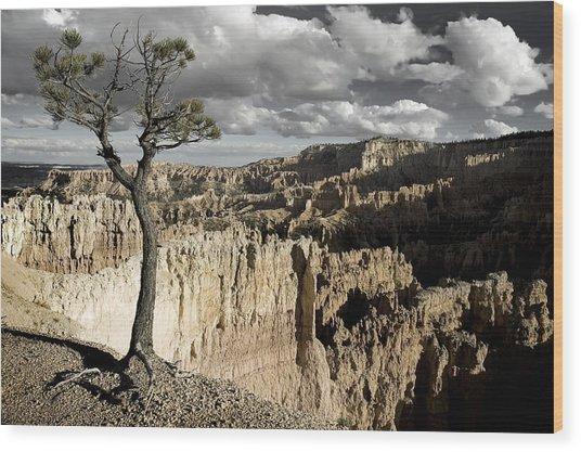 Lone Tree Canyon Wood Print