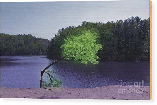 Lonesome Wood Print