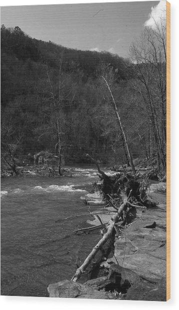 Long-pool-log-jam Wood Print