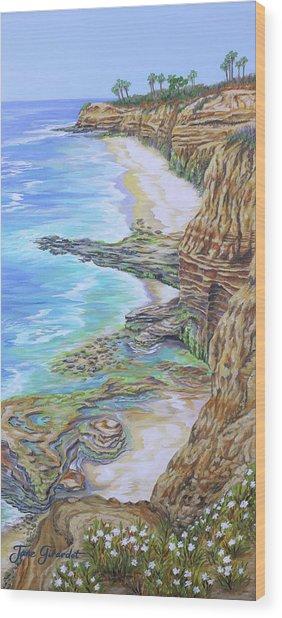 Low Tide Sunset Cliffs Wood Print
