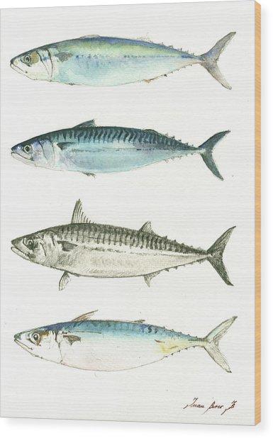 Mackerel Fishes Wood Print