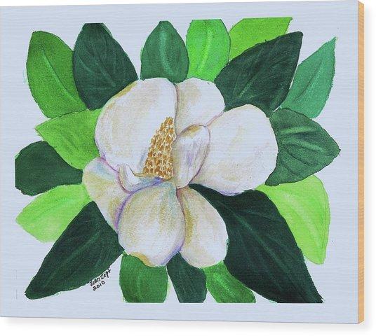 Magnolia IIi Wood Print