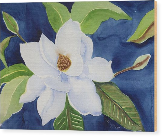 Magnolia Wood Print by Janet Doggett