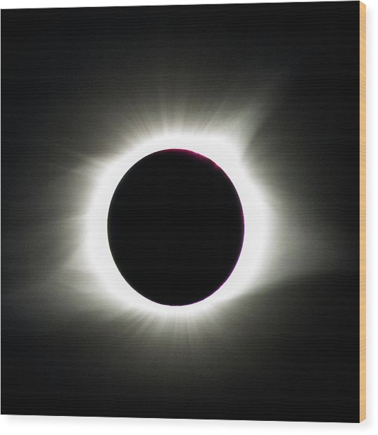 Maximum Totality Wood Print