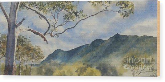 Mc Graths Hump Nsw Wood Print