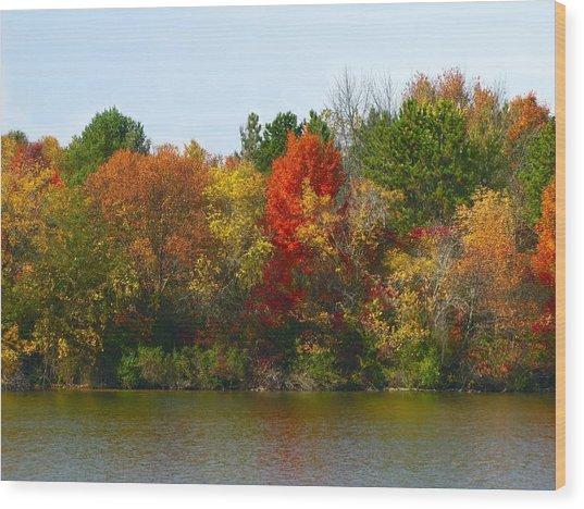 Michigan Fall Colors Wood Print