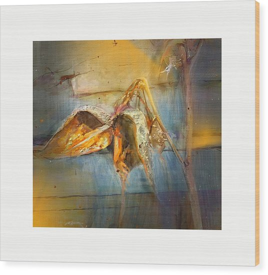 Milkweed Wood Print by Bob Salo