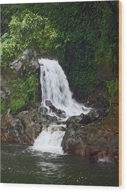Mini Waterfall Wood Print