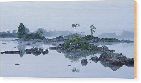 Mist And Trees Wood Print