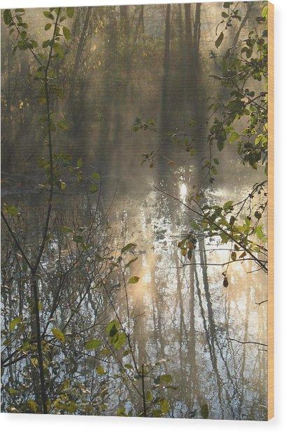 Misty Morning Wood Print by Ralph Baginski