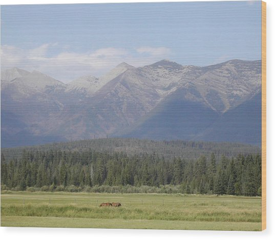 Montana Mountains Wood Print by Lisa Patti Konkol