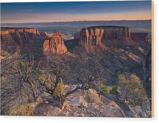 Morning At Colorado National Monument Wood Print