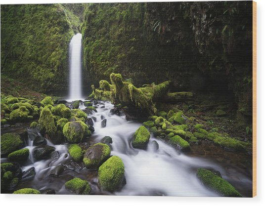 Mossy Grotto Wood Print