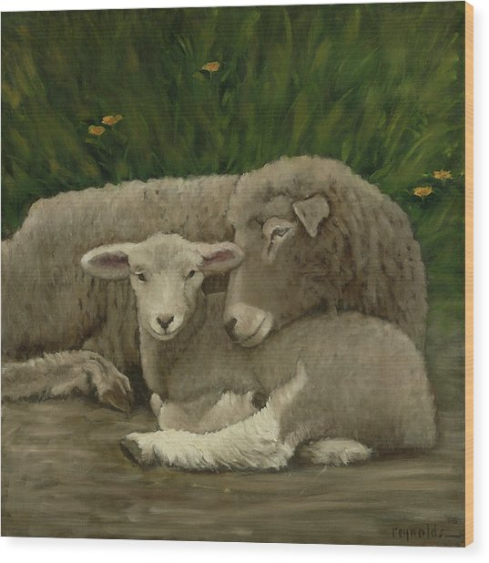 Mother And Lamb Wood Print