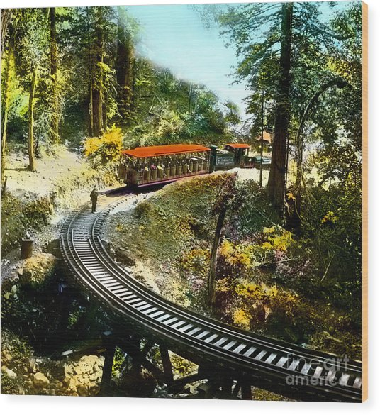 Mount Tamalpais Railway In The 1890s California Wood Print