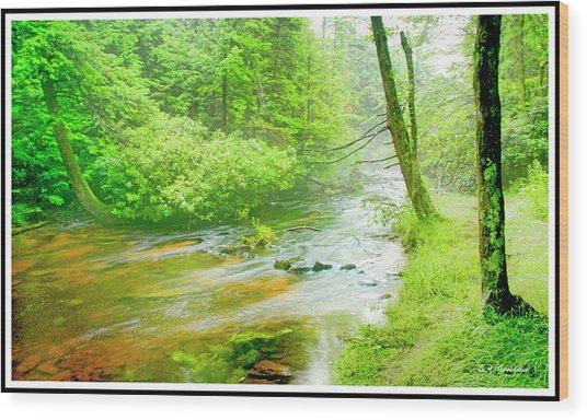 Mountain Stream, Pocono Mountains, Pennsylvania Wood Print