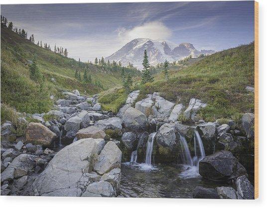 Mt. Rainier Wood Print by Michael Donahue